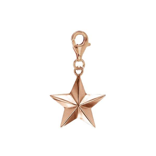 Star-charm-mini-rose-white-1