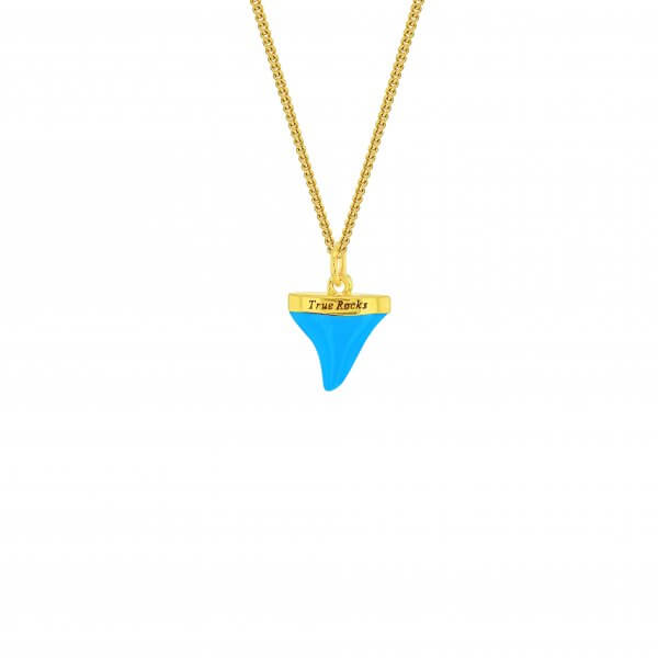 Turquoise & Gold Sharks Tooth on Fine Chain